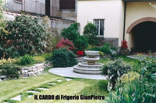 IL CARDO di Frigerio GianPietro
