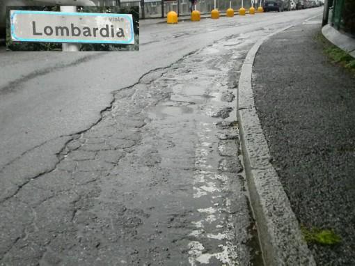 Germanedo Viale Lombardia febbraio 2014 (9)