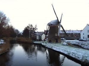 Olanda  (2)