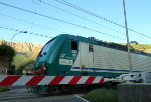 Treno Trenord (2)
