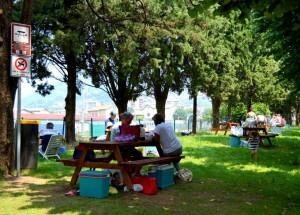 Uno scorcio dell'attuale area pic-nic dei giardini pubblici a lago.